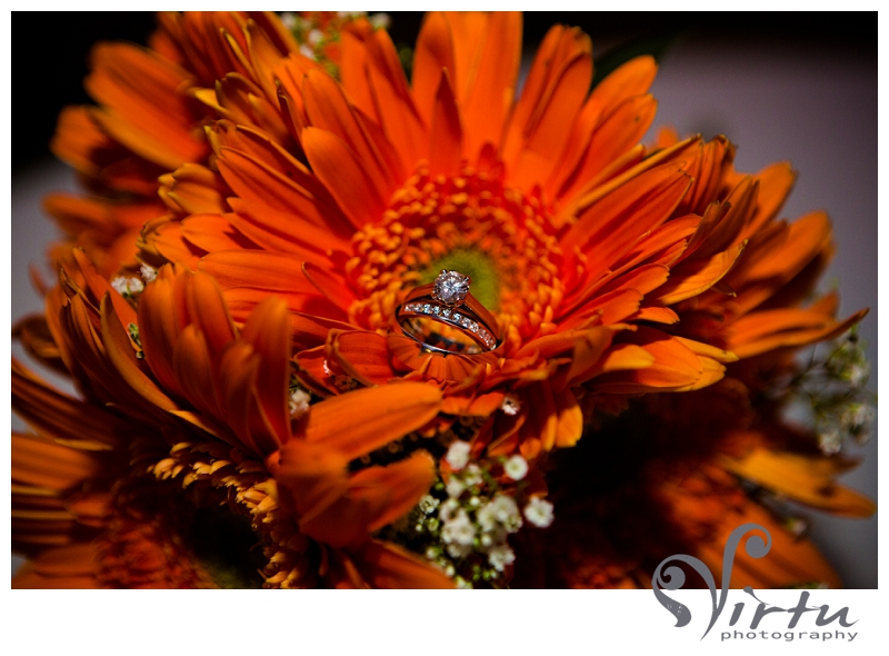 wedding rings in gerber daisy
